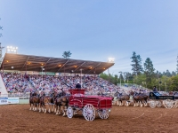 Draft Horse Classic at the Nevada County Fairgrounds | Lenkaland Photography