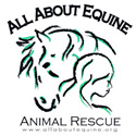 All About Equine Animal Rescue, Inc.