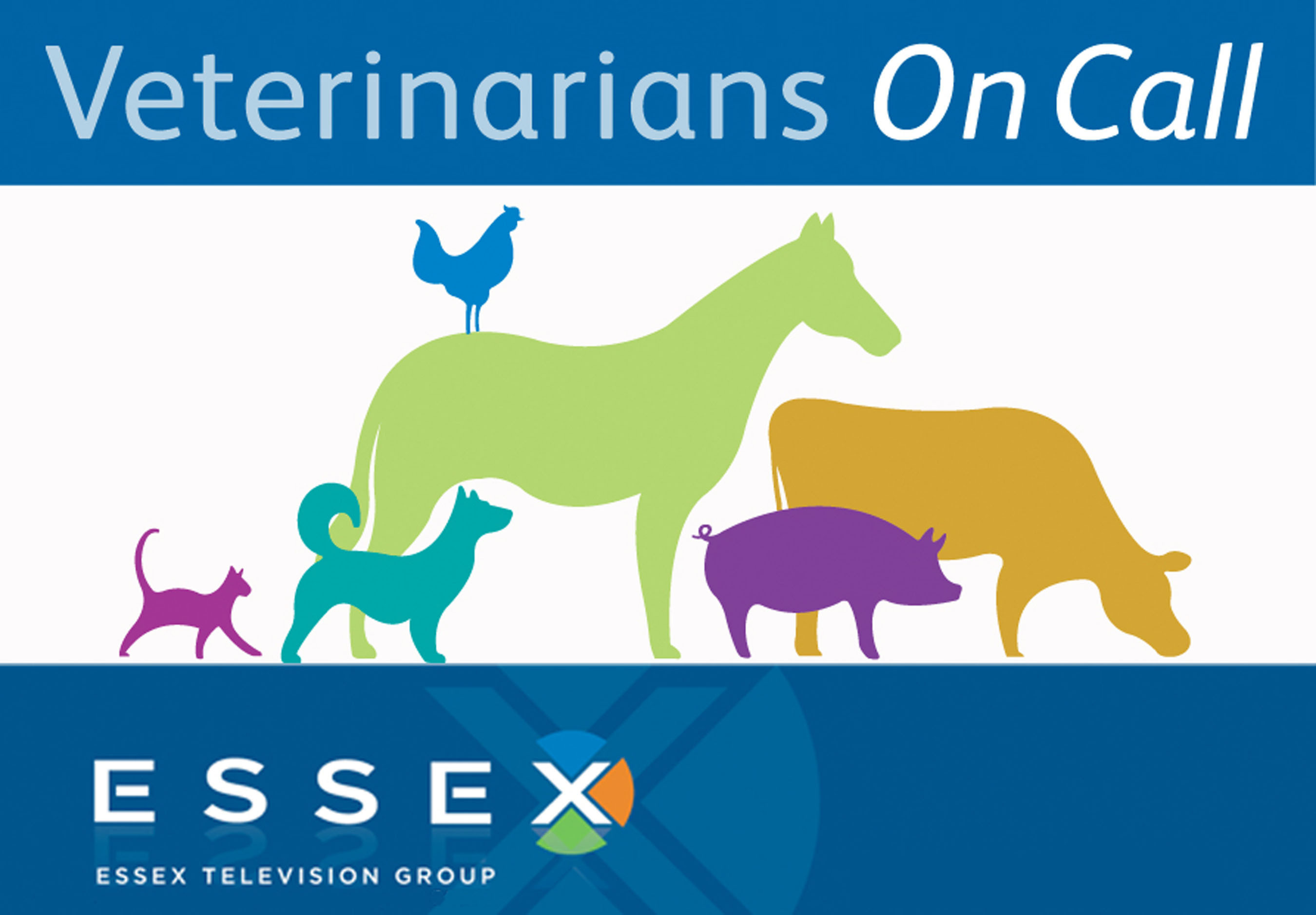 ESSEX TELEVISION GROUP, INC. VETERINARIANS ON CALL