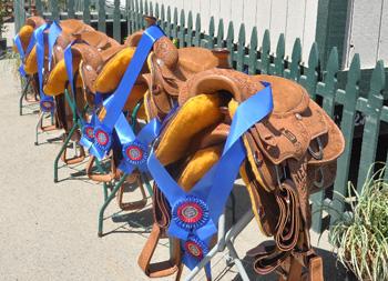 Gold N Grand Saddles