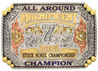 Magnificent 7 Stock Horse Championship