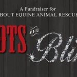 Put on your best Boots and Bling to support rescued horses at All About Equine