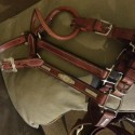 Vintage Show Halter with Sterling