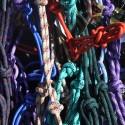 Rope Halters in many colors!